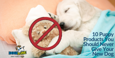10 Puppy Products You Should Never Give Your New Dog