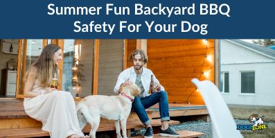 Summer Fun Backyard BBQ Safety For Your Dog
