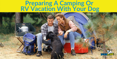 Preparing A Camping Or RV Vacation With Your Dog