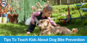 Tips To Teach Kids About Dog Bite Prevention