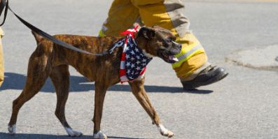 Dog with fireman - Pet Fire Safety Plans