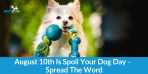 August 10th Is Spoil Your Dog Day – Spread The Word